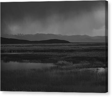 Rain At The Marshes Canvas Print by Jenessa Rahn