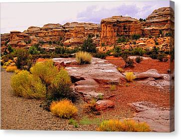 Rain At The Needles District 2 Canvas Print by Marty Koch