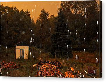 Rain In The Adirondacks Canvas Print by Diane Lent
