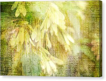 Rain On Leaves Canvas Print by Suzanne Powers