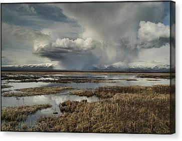 Rain Storm Canvas Print
