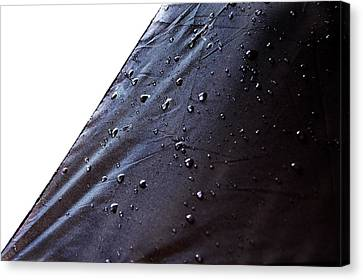 Rain Water Drops Canvas Print by Gina Dsgn