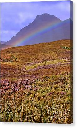 Rainbow And Heather Canvas Print by Henry Kowalski