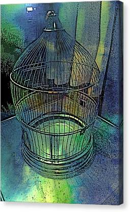 Rainbow Caged Canvas Print by ARTography by Pamela Smale Williams