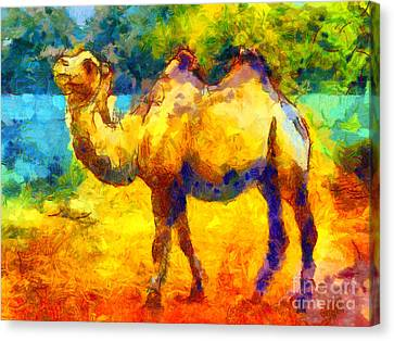 Rainbow Camel Canvas Print by Pixel Chimp