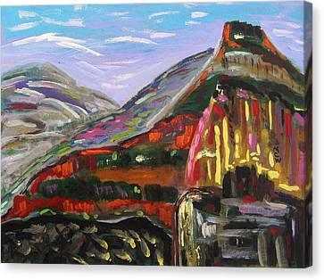 Rainbow Canyons Canvas Print by Mary Carol Williams