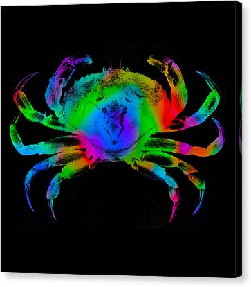 Rainbow Crab Canvas Print by David Blank