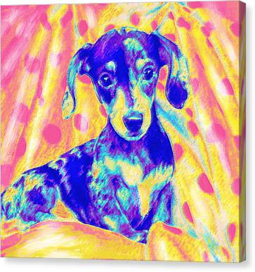 Rainbow Dachshund Canvas Print by Jane Schnetlage