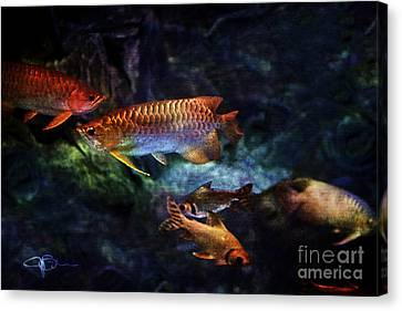 Rainbow Exotic Fish Canvas Print by Jani Bryson