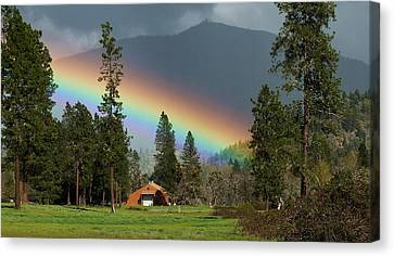 Canvas Print featuring the photograph Rainbow Forest by Julia Hassett