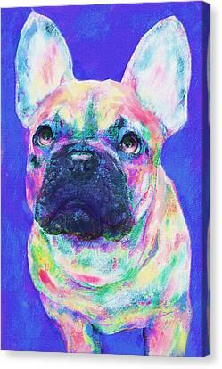 Rainbow French Bulldog Canvas Print by Jane Schnetlage