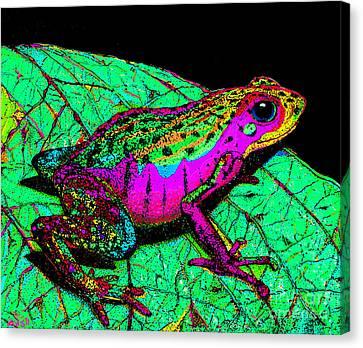 Rainbow Frog 3 Canvas Print by Nick Gustafson
