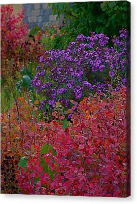 Rainbow Garden Canvas Print by Tim Good