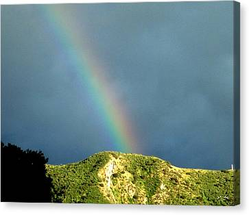 Rainbow I Canvas Print