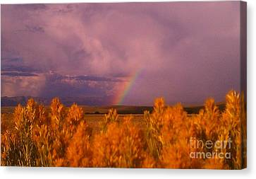Canvas Print featuring the photograph Rainbow In The Plains by Chris Tarpening
