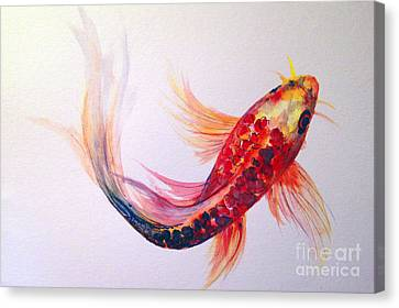 Rainbow Koi Canvas Print by Lauren Heller