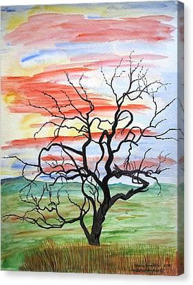 Rainbow Mesquite Canvas Print