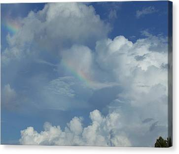Canvas Print featuring the photograph Rainbow by Michele Kaiser