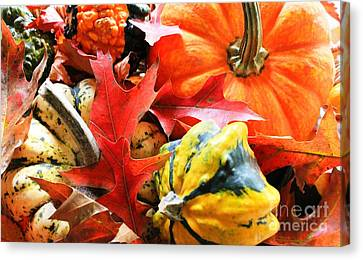 Rainbow Of Autumn Colors Canvas Print by Judy Palkimas
