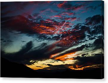 Rainbow Of Colors Canvas Print by Swift Family