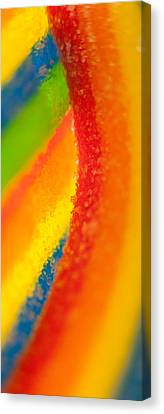 Rainbow Canvas Print by Rebecca Skinner