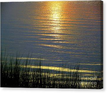 Rainbow Waters Canvas Print by CapeScapes Fine Art Photography
