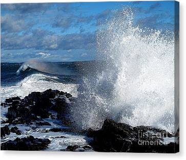 Rainbow Wave Canvas Print by Donnie Freeman