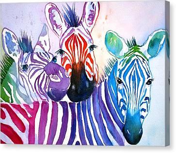 Rainbow Zebra's Canvas Print by Carlin Blahnik