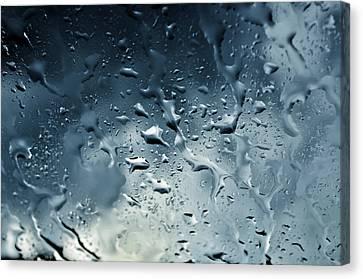 Raindrops Canvas Print by Fabrizio Troiani