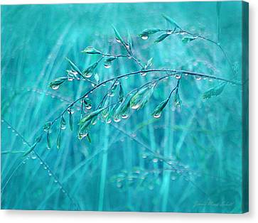 Canvas Print featuring the photograph Raindrops Falling On Teal Blue Grasses by Jennie Marie Schell