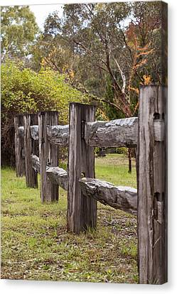 Raindrops On Rustic Wood Fence Canvas Print by Michelle Wrighton