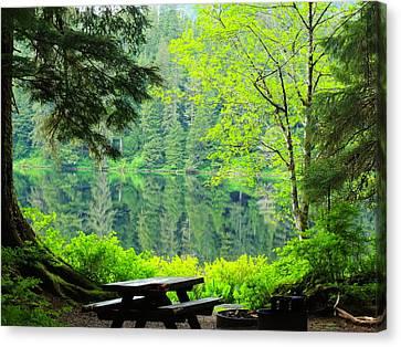Canvas Print featuring the photograph Rainforest Beauty by Karen Horn
