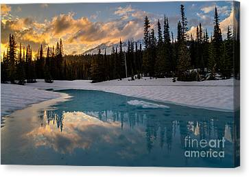 Thaw Canvas Print - Rainier Fire And Ice by Mike Reid