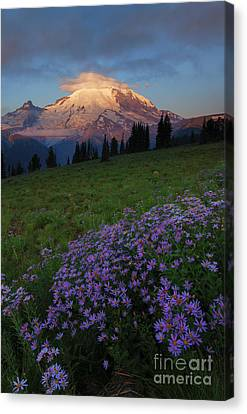 Rainier Morning Cap Canvas Print
