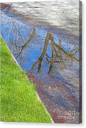 Rainy Day Aftermath Canvas Print by Ann Horn