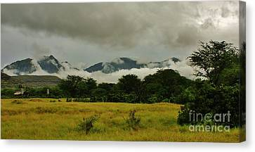 Rainy Day In Paradise Canvas Print