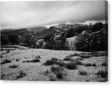 Rainy Day In The Lake District Near Loughrigg Cumbria England Uk Canvas Print by Joe Fox
