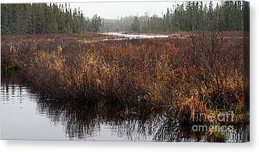 Rainy Day On The Cross Bay River Canvas Print by Larry Ricker