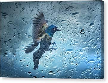 Rainy Day Canvas Print by Steven Michael