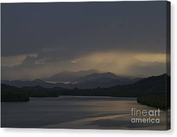 Canvas Print featuring the photograph Rainy Morning by Gary Bridger