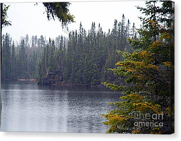Rainy Morning On Snipe Lake Canvas Print by Larry Ricker