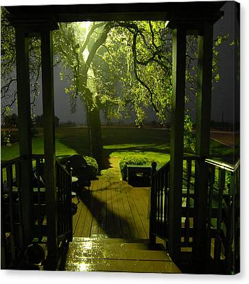 Rainy Night Canvas Print by Susan D Moody
