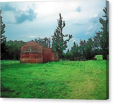 Rainy Pasture Canvas Print by Terry Reynoldson