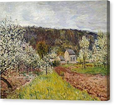 Rainy Spring Near Paris Canvas Print by Alfred Sisley