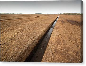 Drain Canvas Print - Raised Bog Being Harvested For Peat by Ashley Cooper