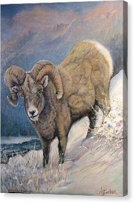 Canvas Print featuring the painting Ram In The Snow by Donna Tucker
