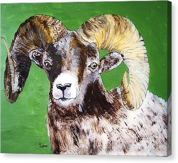 Ram Canvas Print by Lucia Grilletto