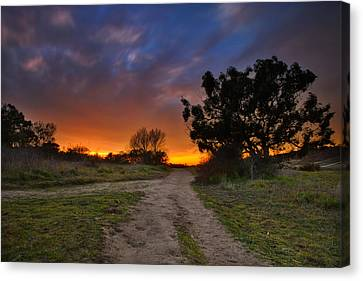 Pastel Canvas Print - Rancho Santa Fe Sunset by Larry Marshall