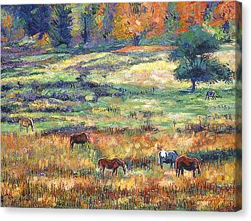 Range Country Canvas Print by David Lloyd Glover