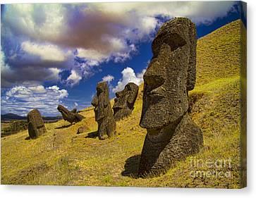 Rano Rarakui Moai Statues On Easter Island Canvas Print by David Smith